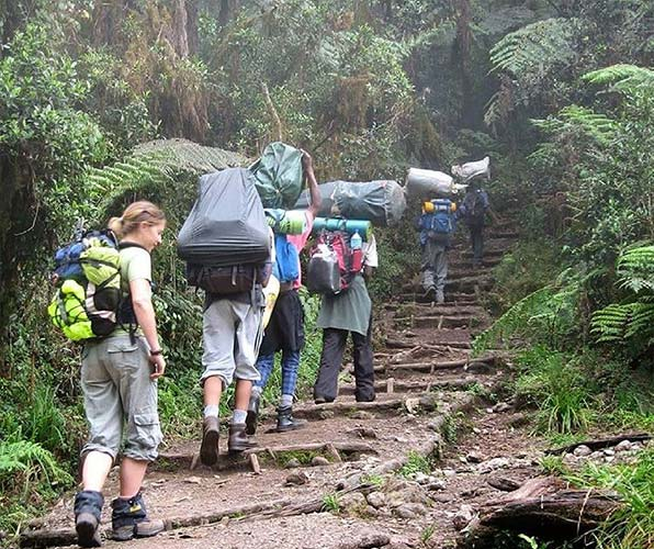 MOUNTAINS HIKE WITH EXPERIENCED GUIDES